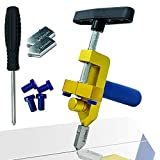 Glass Cutter Hand Tool, Manual Tile Cutter, 2 in 1 Glass Cutting Tool with Glass Breaking Pliers, DIY Tool Kit, 3 Tungsten Steel Blades, 4 Tips, 1 Screwdriver, Golden