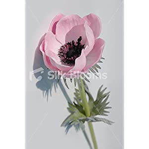 Single Artificial Fresh Touch Baby Pink Anemone, Silk Pink Poppy