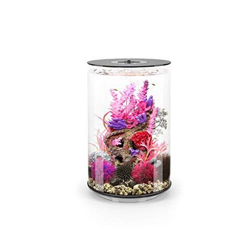DUTUI Stilles Aquarium Aus Acryl, Kein Wasserwechsel Für Das Wohnzimmer Im Haushalt, Kleines Aquarium, Ökologische Mikrolandschaft, Geeignet Für Fische