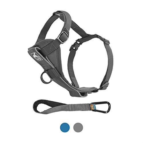 Kurgo Dog Harness | Pet Walking Harness | No Pull Harness Front Clip Feature for Training Included | Car Seat Belt | Tru-Fit Quick Release Style | Small | Grey