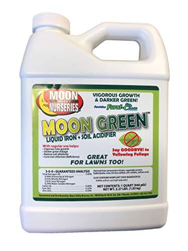 Moon Green 1 Quart