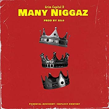 Many Niggaz