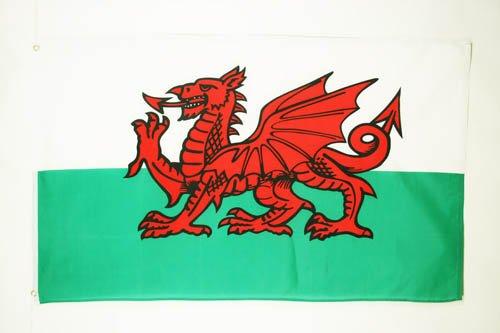 AZ FLAG Flagge Wales 150x90cm - WALISISCHE Fahne 90 x 150 cm feiner Polyester - flaggen