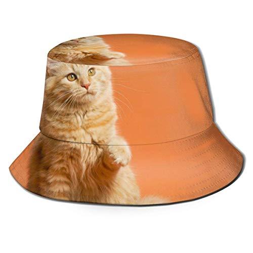 Gatito pequeño Unisex sobre Fondo marrón Sombrero de Pescador Sombrero de Pescador Sombrero para el Sol al Aire Libre
