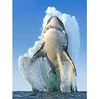 5Dサメの写真フルスクエアラウンドドリルダイヤモンド刺繡ラインストーンクロスステッチダイヤモンド絵画針仕事家の装飾工芸品