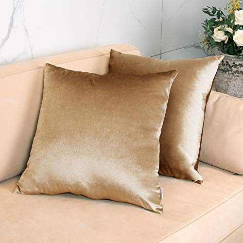 GuildreyTex Throw Pillow Covers, Cozy Velvet Square, Soft Solid Decorative Cushion Pillowcases for Couch, Bed and Car, 16 x 16 Inches Champagne, Pack of 2