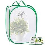 Ayfjovs Insekten- und Schmetterlings-Käfig, 61 cm hoch, Monarch-Schmetterling-Gartenhaus-Set für Raupen im Freien
