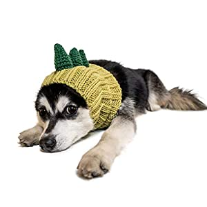 Zoo Snoods Dinosaur Dog Costume – Neck and Ear Warmer Hood for Pets (Medium)