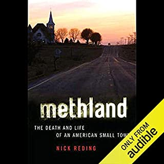 Methland audiobook cover art