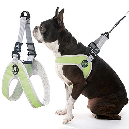 Gooby Dog Harness - Green, Small - Simple Step-in Harness III Small Dog Harness Scratch Resistant - On The Go Breathable Inner Mesh Harness for Small Dogs or Cat Harness for Indoor and Outdoor Use