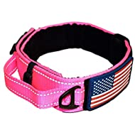 """Dog Collar with Control Handle Quick Release Metal Buckle Heavy Duty Military Style 2"""" Width Nylon with USA Flag for Handling and Training Large Canine Male Or Female K9 (806C-PINKTAC)"""