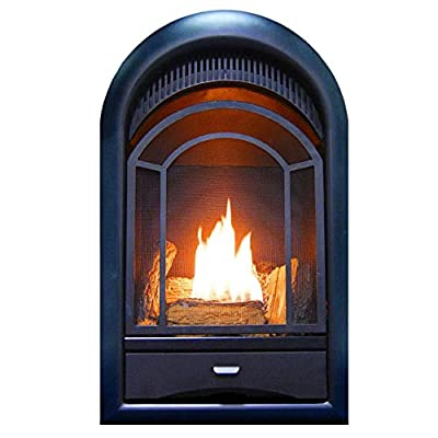 ProCom Heating PCS150T Ventless Fireplace Insert Thermostat Control Arched Door, Medium, White