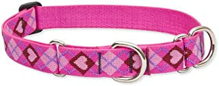 Lupine 1 Inch Puppy Love Martingale Combo Collar