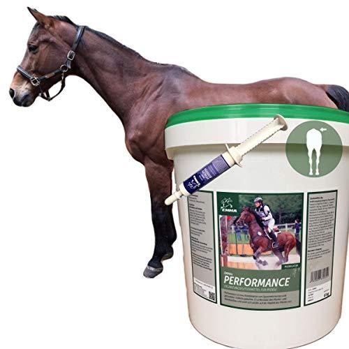 EMMA® Aufbaufutter Muskelaufbau Pferd + Amino Energy Booster I Biotin Zink Selen Pferd I Vitamin A C E K I B komplex (B1 B2 B6 B 12) Kalzium + Sojabohne Pferde 6 Kg + 30 ml