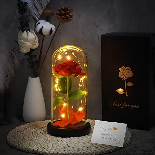 Joyhoop Rosas La Bella y La Bestia, Rosa de Seada Roja, con Pétalos Caídos y Luz LED, con Elegante Cúpula de Cristal y Base Pino, para La Decoración del Hogar y Regalos.(Rosa Eterna)