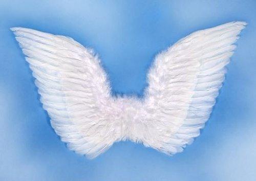 Partydeco SK3–008-karton–alas de ángel con Plumas, Color Blanco, Talla única