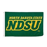 Desert Cactus North Dakota State University NCAA 100% Polyester Indoor Outdoor 3 feet x 5 feet Flag (Style 3a) [並行輸入品]