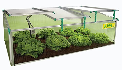 Exaco Biostar 1500-NP Juwel Premium Cold Frame Mini Greenhouse, 59 in. W x 32 in. D x 20 in. H, Clear