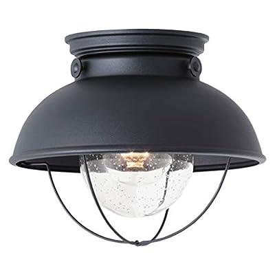 Sea Gull Lighting 8869-12 Sebring One-Light Outdoor Ceiling Flush Mount Outside Fixture, Black Finish