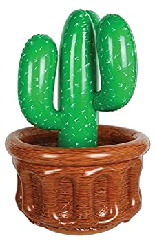 cactus decorations for party
