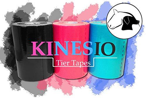 KINESIOLOGIE Tape für Pferde/Tiere 10 cmx5 m blau