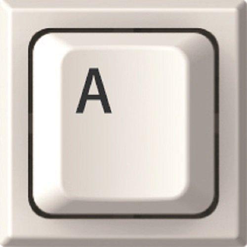 サンビー 印鑑 ハンコ キー印 デザインルーム メールオーダー A key01-A