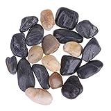 Healifty - Piedras Decorativas Naturales pulidas de Roca de río para acuarios, Tanque de Peces, depósito de Flores, decoración de Peces, Bricolaje, Accesorios