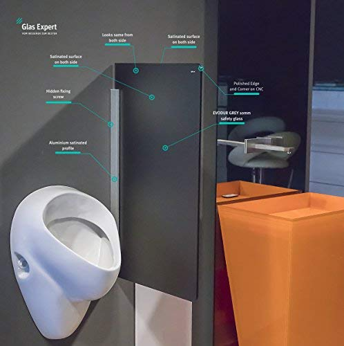Glas Expert | Glas Urinal Trennwand | 45cm x 80cm | Urinal Glaswand | Bidet Toiletten Schamwand | Glas WC Trennwand (Grau Satin S4)