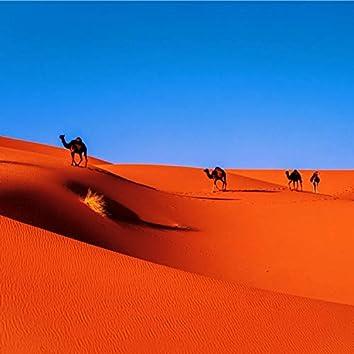 Strawberry In The Sahara