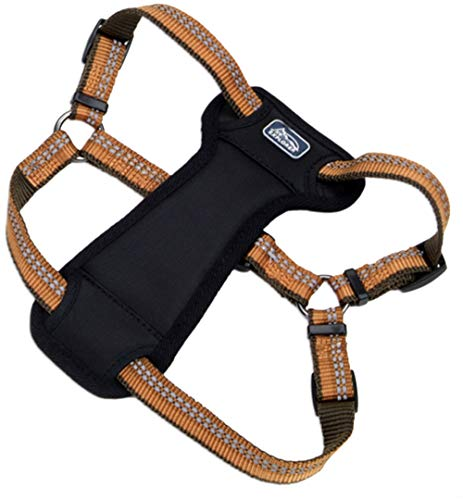 Coastal - K-9 Explorer - Reflective Adjustable Padded Dog Harness, Campfire Orange, 1' x 26'-38'