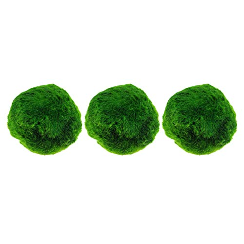 VILLCASE 3Pcs Marimo Moss Ball Piccoli Acquari per Acquario con Acquario E Terrario in Vaso di Vetro (Verde) 2Cm
