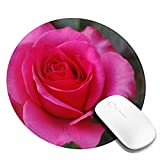 pengyong Roses Meaning of Dream Mouse...