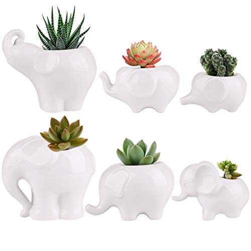Succluent Pots ,Small Flower Pots Planter Pots with Drinage,Ceramic Cute Animal Mini Elephant Flowers Pots Planter for Cactus(6 Pack)