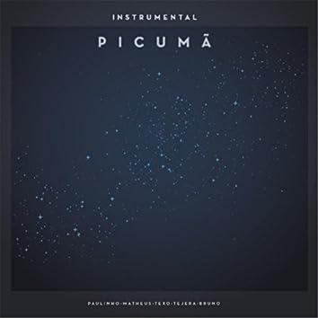 Instrumental Picumã