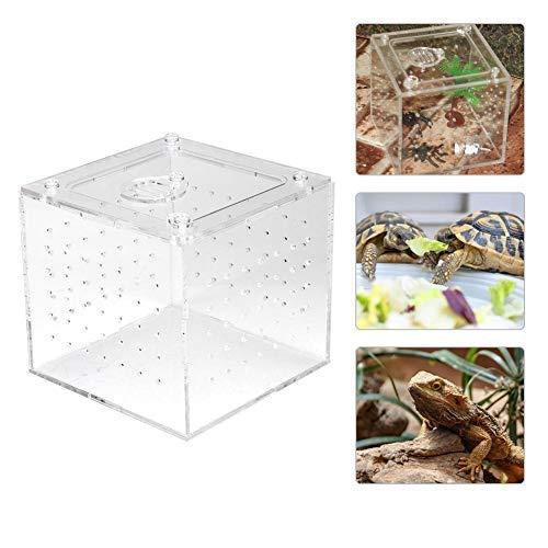 Transparente Reptilienbox Acryl Insekten-Sichtbox Aufzuchtbehälter Behälter für Spinnen-Vogelspinnen Geckos Grillen Schnecken Einsiedlerkrebse 3.9x3.9x3.5inch
