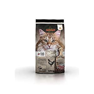 Leonardo Adult GF Maxi [1,8kg] Katzenfutter | Getreidefreies Trockenfutter für Katzen | Alleinfuttermittel für große… 2