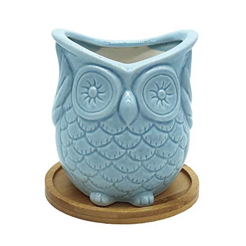Ceramic Owl Succulent Planter Pot with Drainage Tray, Cute Animal Cactus Flower Container, Blue Bonsai Holder for Indoor Plants