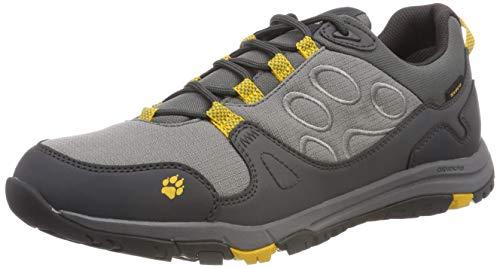 Jack Wolfskin Herren Activate Texapore Low M Trekking-& Wanderhalbschuhe, Grau (Burly Yellow Xt 3802), 43 EU