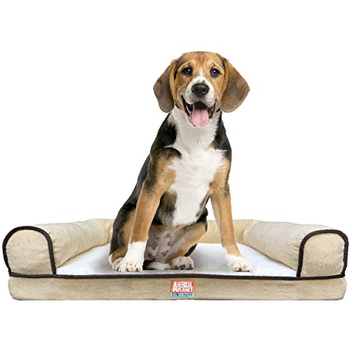 Animal Planet Orthopedic Luxury Dog Bed - Premium Memory Foam Pet Dog Sofa Bed Lounger with Washable Cover - for Dogs & Cats, Large, Taupe