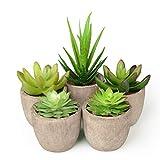 Abree Künstliche Sukkulenten Pflanzen 5er Set kunstpflanzen mit topf für Haus/Büro