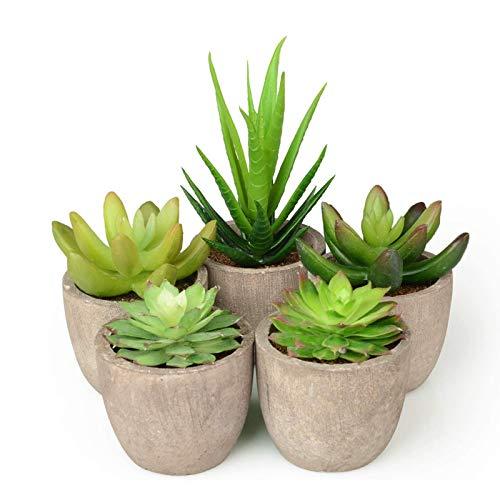 Abree Lot de 5 plantes succulentes artificielles en pot gris et cactus artificiels assortis pour la décoration de...