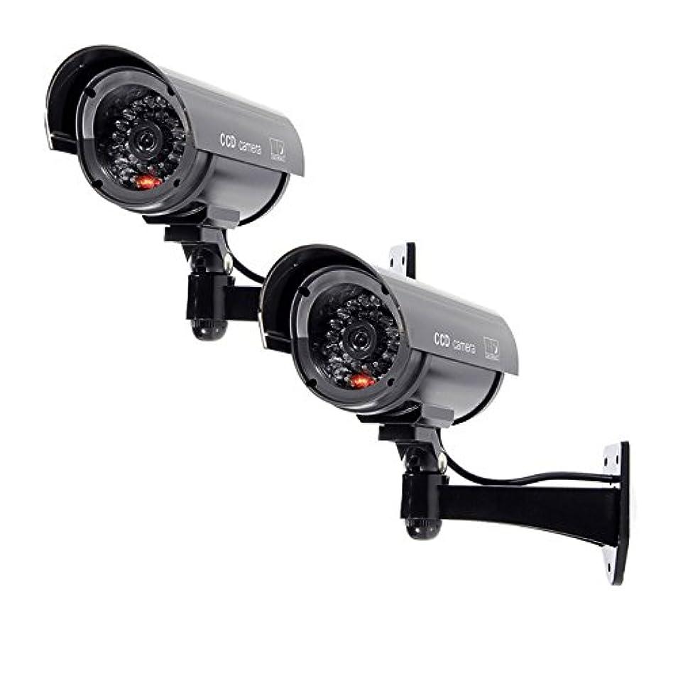 水陸両用労苦東部Cikuso 2x 点滅ライトダミーセキュリティカメラ 偽の赤外線LED監視ブレット