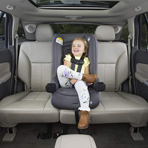 Safety 1st Jive 2-in-1 Convertible Car Seat, Harvest Moon