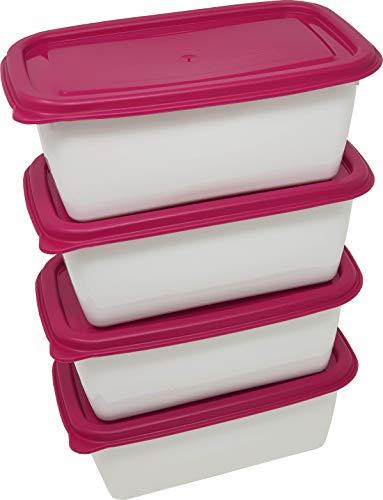 Gies Tiefkühldosen Gefrierdosen Set Frischhaltedosen Vorratsdosen (40255)
