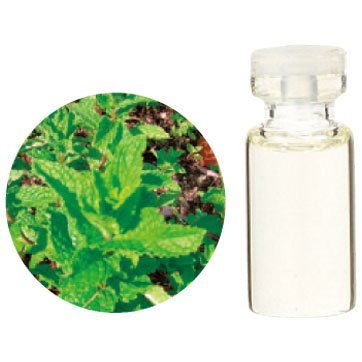 Aroma Japan Import Tree of Life Herbal Life Essential Oil 3ml - Spear Mint (Harajuku Culture Pack)