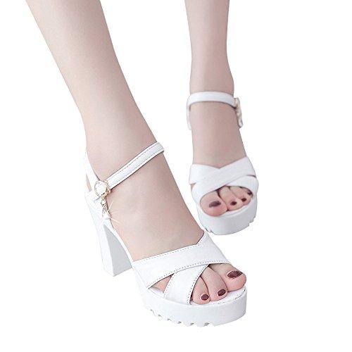 Sandalias mujer plataforma tacon gruesos con hebilla de elegancia de sexy Zapatos de tacón mujer de vestir moda sencillo de Roma Sandalias de tacon de Fiesta de Verano