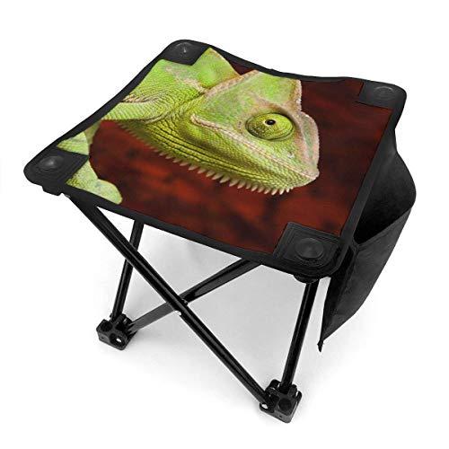 Florasun Taburete de camping plegable colorido verde camaleón portátil silla camping caza pesca viaje con bolsa de transporte