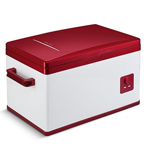 FL- Draagbare compressor, voor in de auto, voor in de koelkast of in de vriezer, 12 V/24 V/220 V