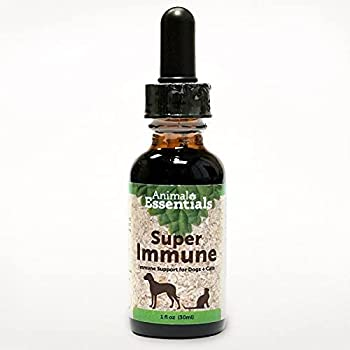 Olive Leaf Immune Support Glycerin-Based Made For Dogs and Cats 1 ounce glass bottle with dropper