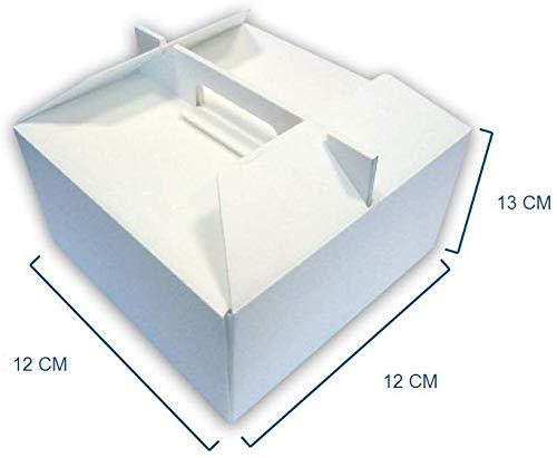 BOX GEL Unidades 10Box para Tarta Helado y semifreddi cm 12x 12Alta cm 13Recipiente Térmico para Llevar de Repostería